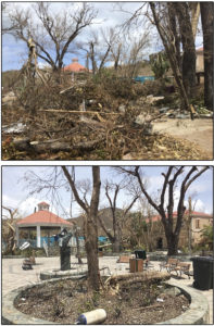 Before and After: Cruz Bay Park Monday, and Wednesday after an intensive cleanup. (Amy Roberts Photos)