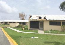Flamboyant Gardens shows damage from Hurricane Maria.