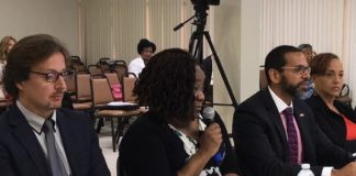 Jan Tarakol, Gwendolyn Williams and Diane Capehart testify at a Rules and Judiciary Committee hearing Thursday.