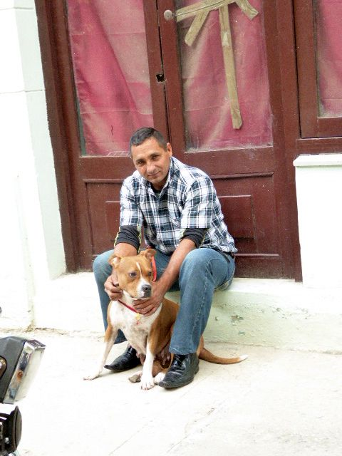 Cuban Pit Bull