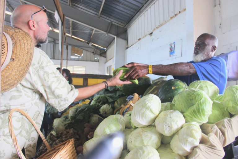 Sejah Farms – Over 20 Years of Fresh, Local Produce on St. Croix