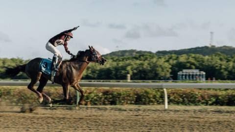 Horse Racing Industry Dwindles Amid Litigation