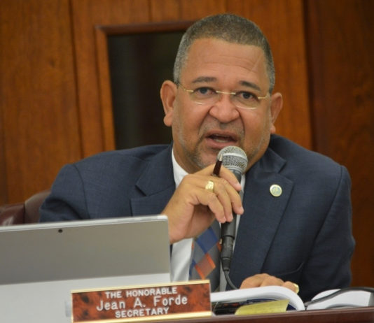 Sen. Jean Forde pushes Education officials for information about personnel issues in the department during Monday's Finance Committee hearing.