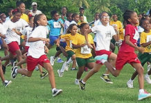 Elementary school age girls take off on the one-mile course at UVI. (V.I. Pace Runners photo)
