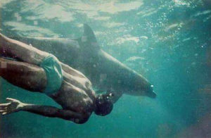 Prosterman swims with a dolphin in 1994. (Submitted photo)