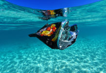A carelessly discarded chip bag floats in the territory's otherwise beautiful blue waters. (Alain M Brin, Blue Glass Photography)
