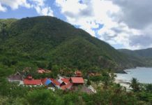 View of Carambola Resort with Hamms Bluff in the background. (Susan Ellis photo)