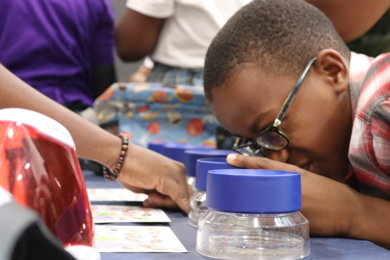 Students Ignite Minds Through Innovations, Explorations at STEAM Day