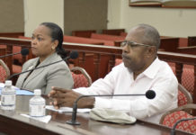 Deputy Commissioner of Transportation Karole Ovesen-McGregor and V.I. resident Bruce Flamon testify before the Senate Committee on Transportation Friday. (Photo by the USVI Legislature)