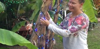 Volunteer Lise Sorensen with one of the many trees and bushes decorated on the grounds. (Photos by Don Buchanan)