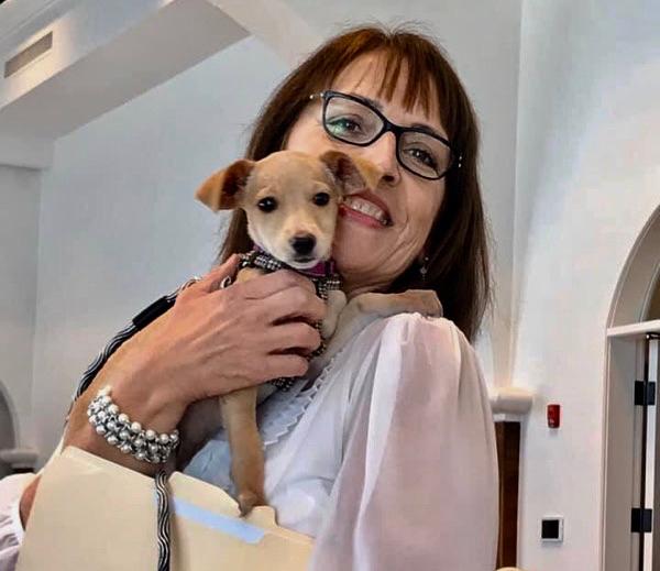 Humane Society's Valentine Fundraiser Garners $150,000