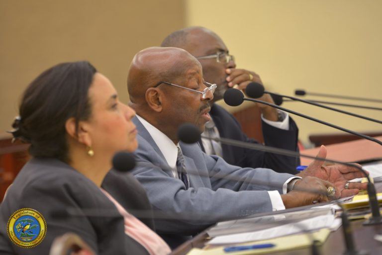 Senators Criticize Carambola Sale, Want More Experienced GERS Board