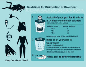 Kitty Edwards created this diver precaution poster showing how to disinfect gear so as not to spread Stony Coral Tissue Loss Disease. (Image by Kitty Edwards, CZM)