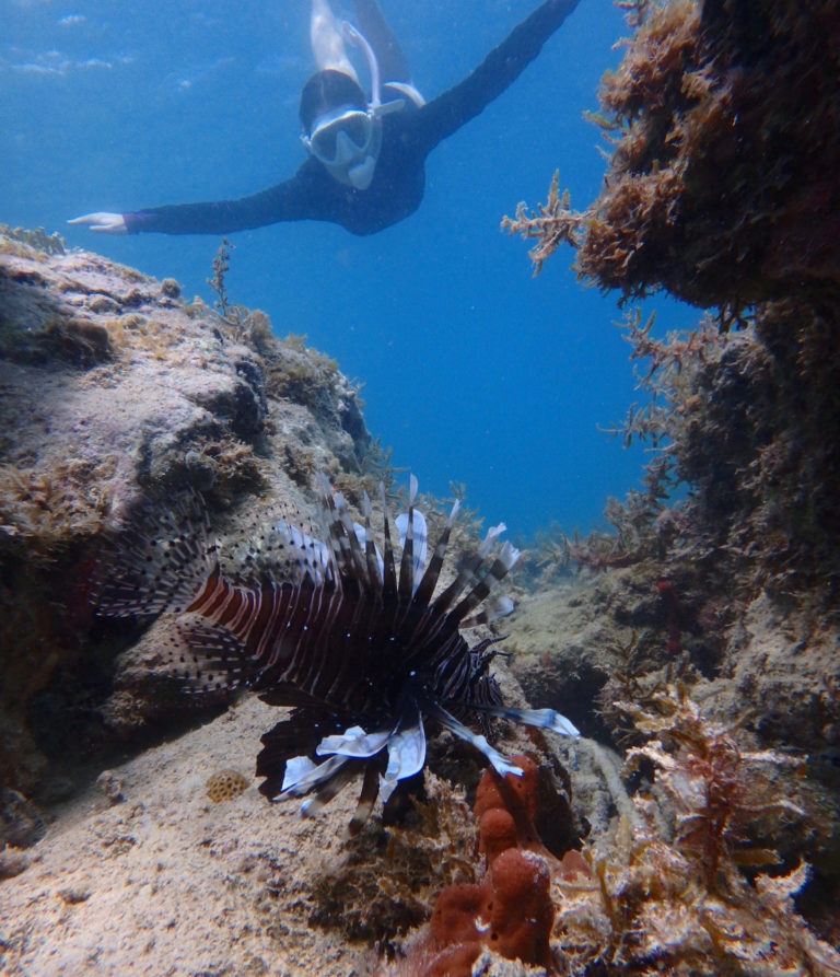 Virtual 'Science Saturday' Serves Lionfish and Kids
