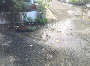 Sewage seeps out of a manhole near Pond Mouth and flows to Enighed Pond and the nearby open ocean. (Photo provided by Sylvia Kudirka)