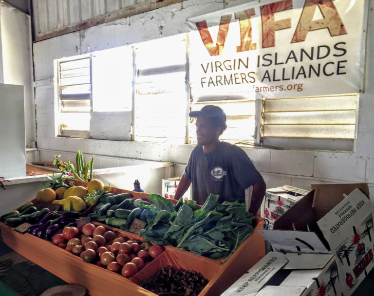 V.I. Farmers Unite to Fight for a Voice