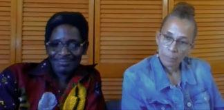 Michael and Veronica Boyce testified remotely to the senators. (Screenshot)