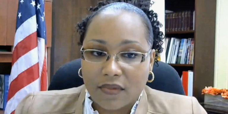 Senators Alarmed by Shortage of Teachers, Laptops for Online Learning