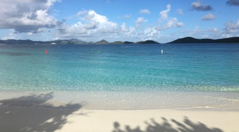 Caneel Bay Purpose Group Founder Unlikely to Take Part in Open Bidding