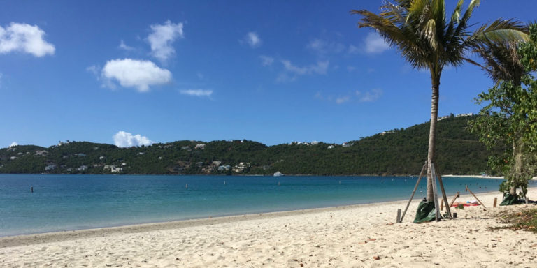 Magens Bay Authority Entering Digital Age with New Online System