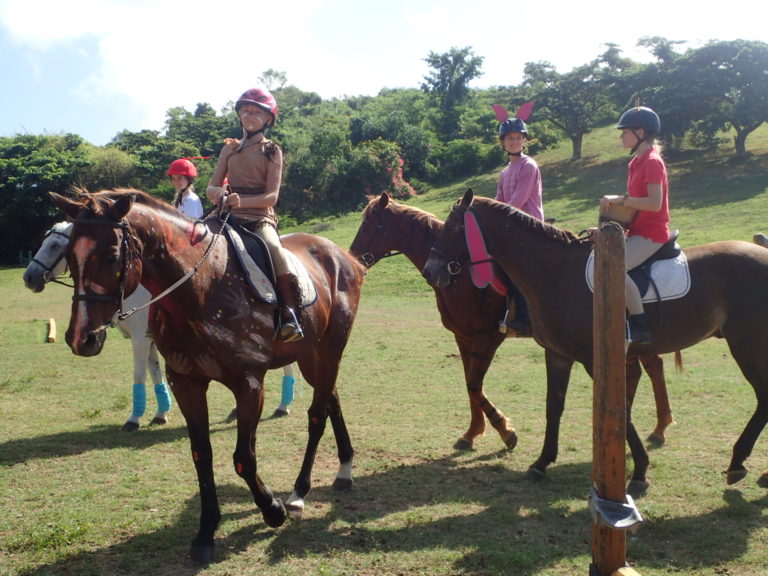 St. Croix Pony Club Continues to Educate Young Equestrians 50 Years Later
