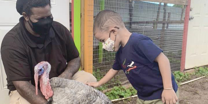 In Frederiksted, Jungle James Offers Learning in an Outdoor Setting