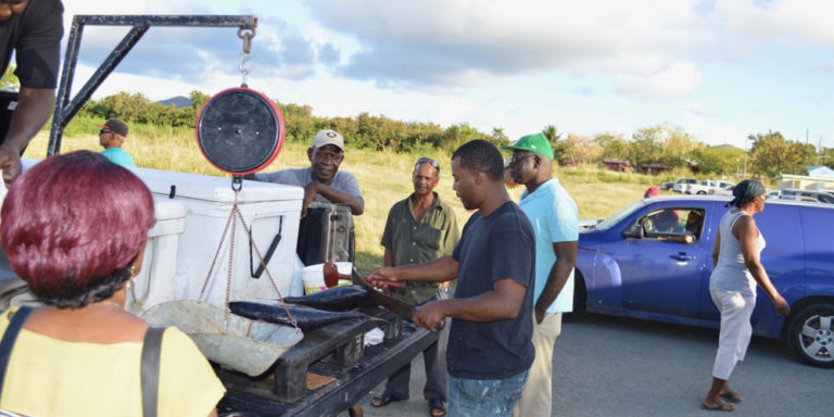 St. Croix's La Reine Fish Market Reopens