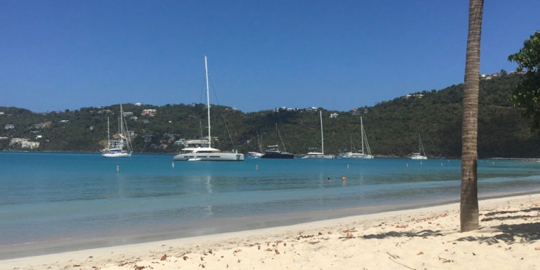 Magens Bay Authority Grappling with Sargassum, Other Issues