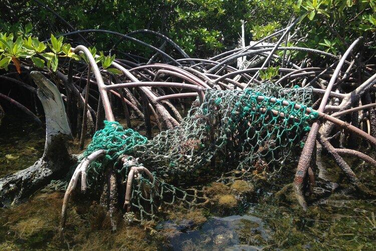 The Tide is Turning on Marine Debris in the U.S. Virgin Islands