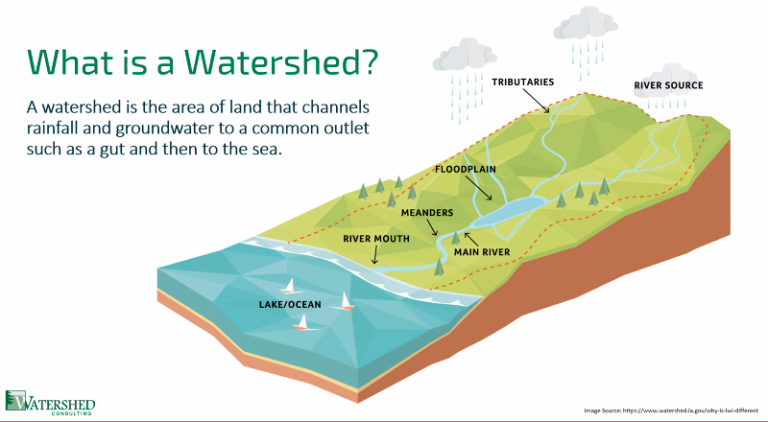 Watershed Project Aims to Improve Water Quality in the Territory